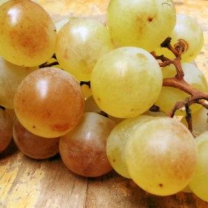 Epicerie-paysanne-raisin
